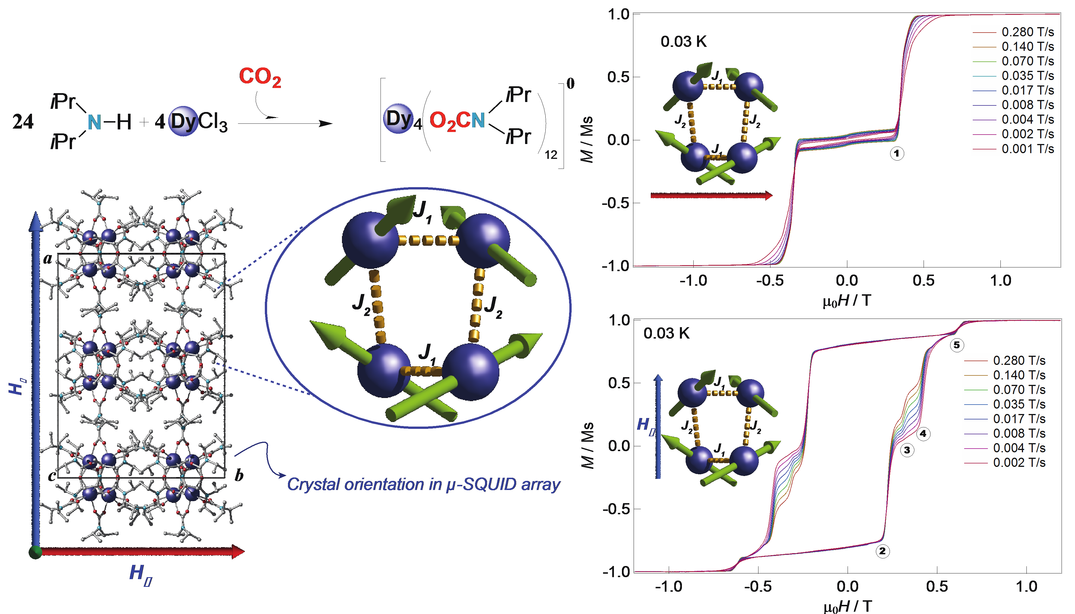 Ruben Group Molecular Self Assembly In Nanotechnology Single Molecule Magnets From Co2